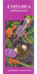 Costa Rica Amphibians: Cover