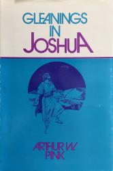Gleanings in Joshua: Cover