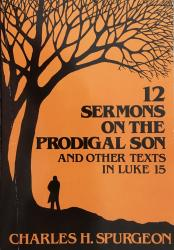 Twelve Sermons on the Prodigal Son: Cover